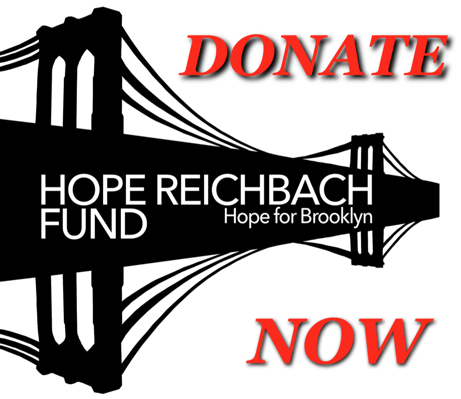 Click Here to Support the Hope Reichbach Fund